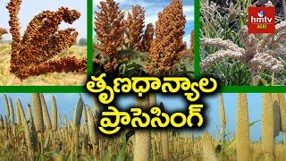 Download Millets Processing Guide By Mynampati Sreenivasa Rao | Food Processing | hmtv Agri Video