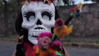 Download Magno Desfile Día de Muertos CDMX Video