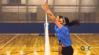 Download Blocking Tips - Terry Liskevych - The Art of Coaching Volleyball Video