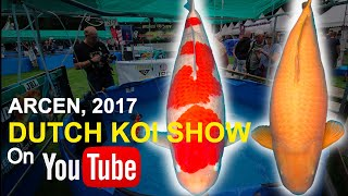 Download Holland Koi Show 2017 | Arcen Nederland Video