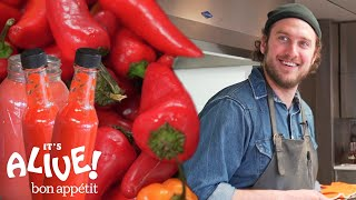 Download Brad Makes Fermented Hot Sauce | It's Alive | Bon Appétit Video