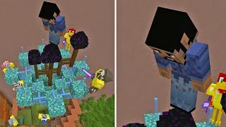 Download This is WHY you Shouldn't TROLL in Hide and Seek (Minecraft Xbox) Video