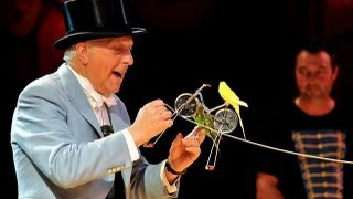 Download Norman Barrett MBE and his amazing budgies: Zippos Circus Video