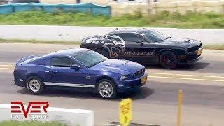 Download Ford Mustang GT 5.0 vs Dodge Challenger SRT Hellcat | Drag Races Video