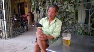 Download Sáo biết nói, nhậu bia 2 Video