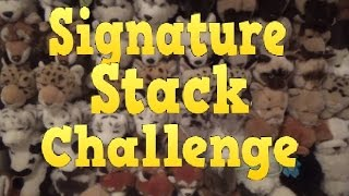 Download Signature Stack Challenge (original) Video