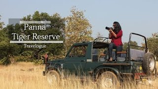 Download Panna Tiger Reserve   Forest Safari, Pandav Falls and Ranhe Falls in Madhya Pradesh   Video