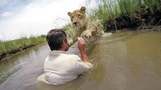 Download GoPro VR BTS: For the Love of Lions Video