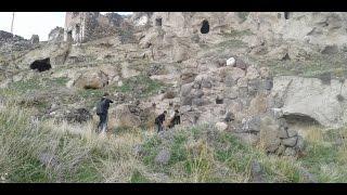 Download Terkedilmiş Ermeni Köyünü İnceledik (Tüneller Bulduk)!!! Video