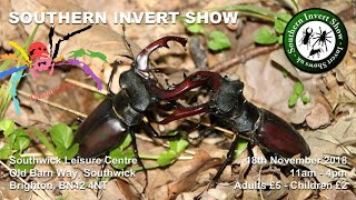 Download Invert Shows UK - Southern Invertebrate Show Video