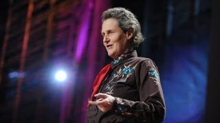 Download The world needs all kinds of minds - Temple Grandin Video