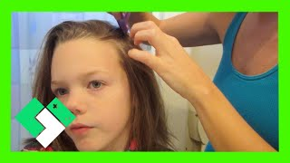Download WE HAVE LICE! (1.10.14 - Day 651) Video