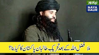 Download فضل الله کی ہلاکت کے بعد تحریک طالبان پاکستان کی قیادت واپس وزیرستان آ گئی Video