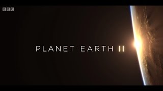 Download Planet Earth II Theme (BBC - Hans Zimmer) Video