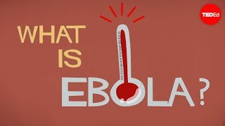 Download What we know (and don't know) about Ebola - Alex Gendler Video