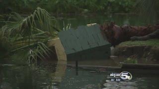 Download Storms damage Alabama Gulf Coast Zoo Video