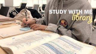 Download [도서관백색소음 2탄] STUDY WITH ME AT THE LIBRARY | 도서관에서 같이공부해요! (real time) | 수린 suzlnne Video