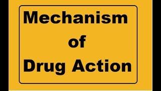 Download Mechanism of drug action !!! Basic pharmacology Video