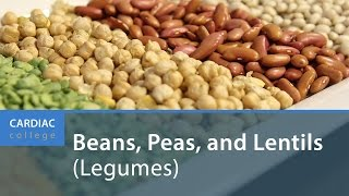 Download How to Include Beans, Peas, and Lentils (Legumes) in Your Diet: Cardiac College Video