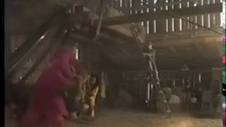 Download Barney's Great Adventure: The Movie (VHS Version) Video