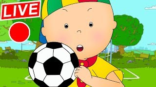 Download 🔴 LIVE CAILLOU LEARNS SOCCER - Live cartoon | Caillou live | Cartoons for children | Cartoon Movie Video