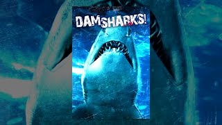 Download Dam Sharks Video