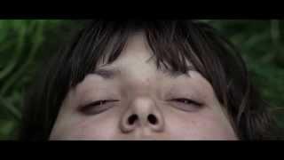 Download Sea Horse - Teaser Video