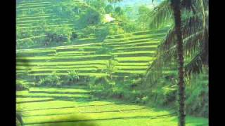 Download The Balinese traditional Bambu & flute Music. Video