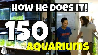 Download How One Man Manages FIVE (5) Fish Rooms in His Basement - Over 150 Aquariums Video