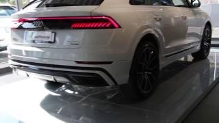 Download New Glacier white Audi Q8 TDI 50 quattro 286 PS (walkaround) Video