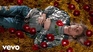 Download Nirvana - Heart-Shaped Box (Official Director's Cut) Video
