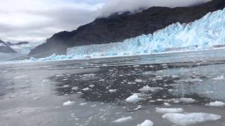 Download Giant Glacier Calving. Lots of freaking out by people on boat. Video
