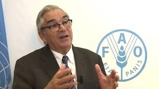 Download Declaraciones del Ministro de Ganadería, Agricultura y Pesca Uruguay, Enzo Benech Video