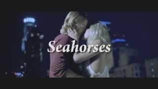 Download Seahorses Trailer Video