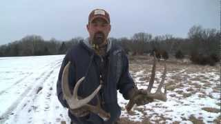 Download Lee Lakosky's Tips for Shed Hunting Video
