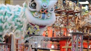 Download Rooster Year 2017 Pavilion Acrobatic Lion Dance 母獅救小獅子 Video