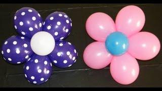 Download Balloon Flower Video
