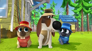 Download Ol' Snapper / Adventures in Puppy-Sitting Video