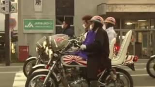 Download 「族が信号守ってるんじゃねぇよ!」って桜田門(桜の代紋)おっと! Video