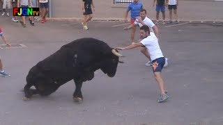Download 3 Toros de Sants de la Pedra 2013 - La Vilavella (Castellon) Bous al carrer [Toros FJGNtv] Video