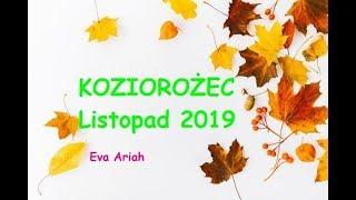 Download KOZIOROŻEC, Listopad 2019, ″Nowe życie, nowy romans... Komunikacja i działanie...″ Video
