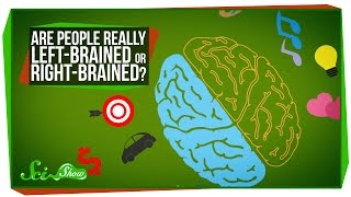 Download Are People Really Left-Brained or Right-Brained? Video