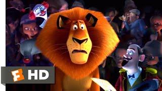 Download Madagascar 3 (2012) - Circus Fail Scene (6/10) | Movieclips Video