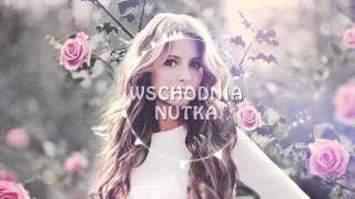 Download Ałła Pugaczowa - Milion ałych roz Video