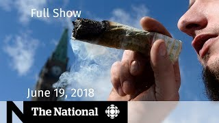 Download WATCH LIVE: The National for Tuesday June 19, 2018 — U.S. Immigration, Legal Pot, Fish Farms Video
