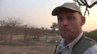 Download Safari Guide Stef gets up close and personal with a hippo Video