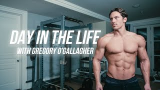 Download How To Get to 6% Body Fat | Warrior Shredding Day in the Life Video
