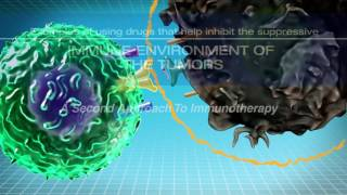 Download IMMUNOTHERAPY: The Path to a Cancer Cure (For Clinicians) Video