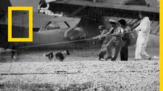 Download الأسرار الخفية للحرب العالمية الثانية: بيرل هاربر | ناشونال جيوغرافيك أبوظبي Video