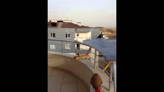 Download Adana güvercinin balkona inişi Video